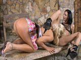 Ivy Winters y Francesca Le, dos amigas de lo mas viciosas - Lesbianas
